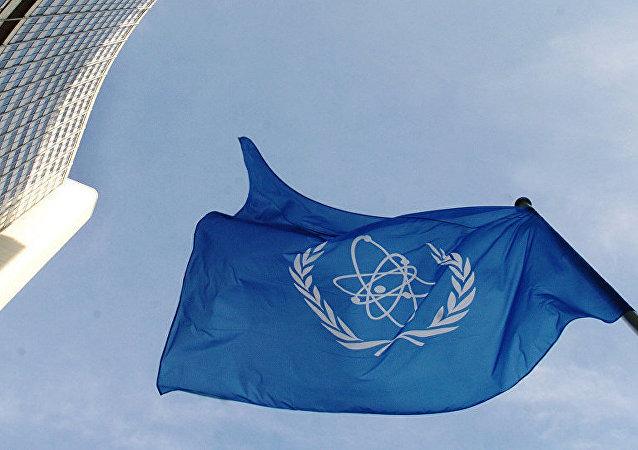 I国际原子能机构