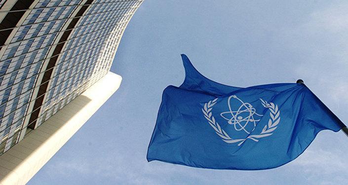 国际原子能机构