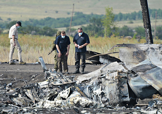 荷蘭眾議院要求調查烏克蘭在馬航MH17空難中扮演的角色