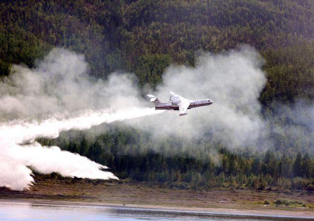航空護林局:俄聯邦林火面積一天內減少5.45萬公頃