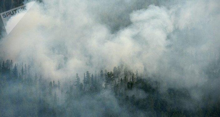 俄中部军区的侦察机发现11处西伯利亚森林火灾