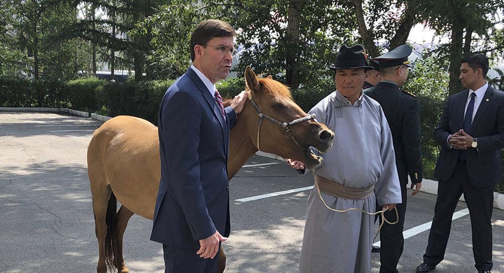 蒙古送给美国防长一匹马