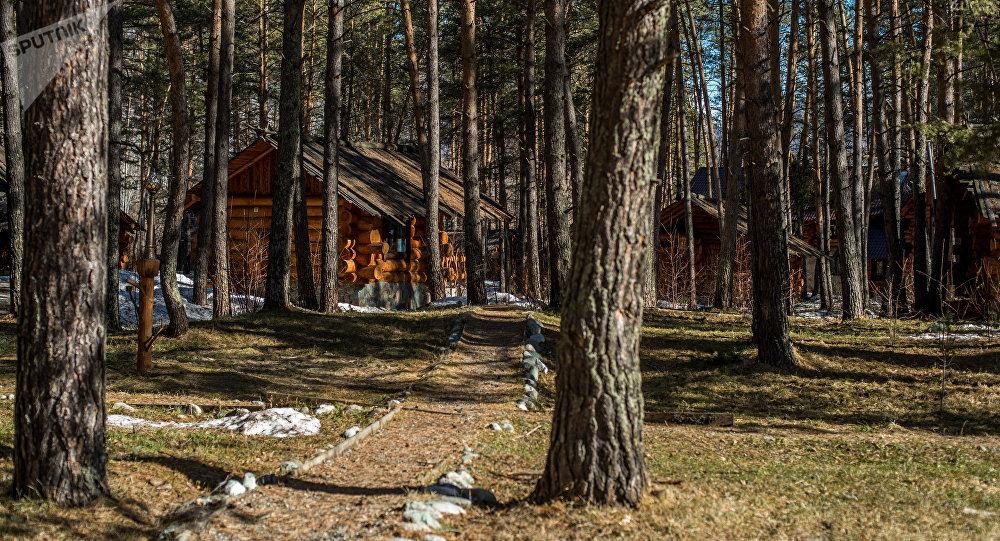 哪些国家生态酒店最多?