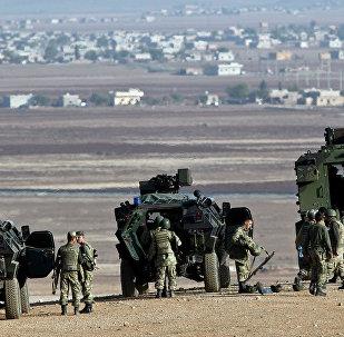 美媒:土耳其可能放弃西方武器转向中国购买