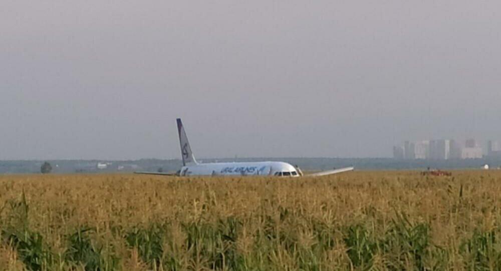 莫斯科郊区迫降A321客机起火 现已扑灭