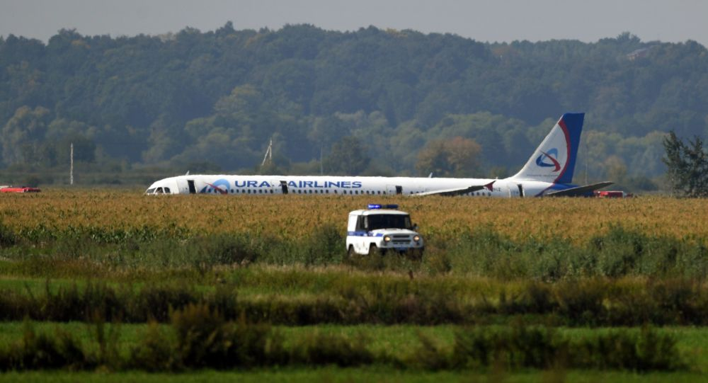 俄航空署署长:А321机组选择在田地迫降是唯一正确的选择