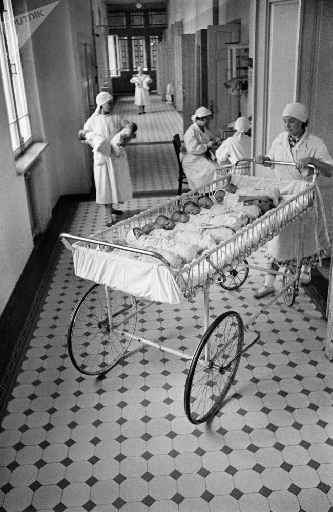 莫斯科一家产院的新生儿哺乳时间。1955年。