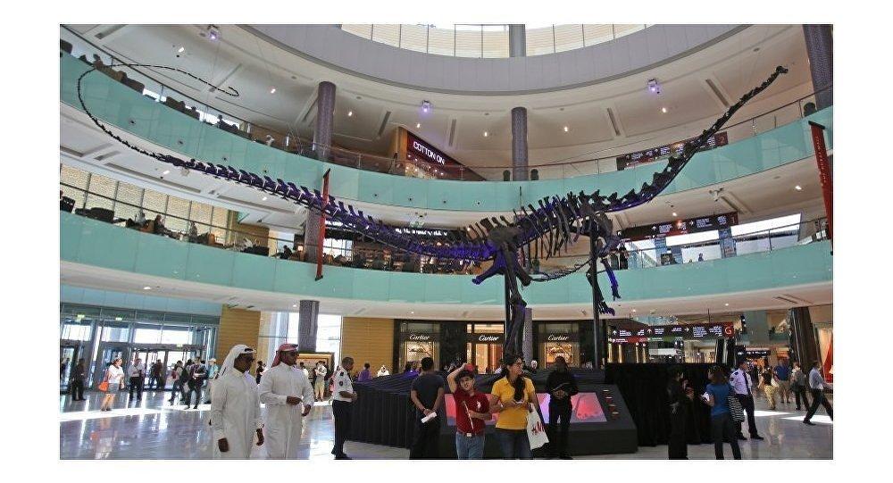 媒体:1.55亿年前的恐龙骨架将出现在阿联酋拍卖会上