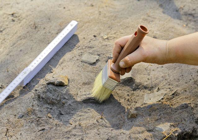 摩洛哥發現世界上最古老的劍龍化石