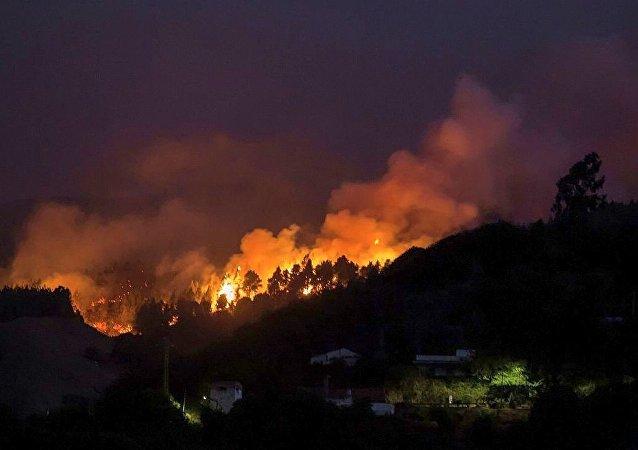 西班牙大加那利島森林火災