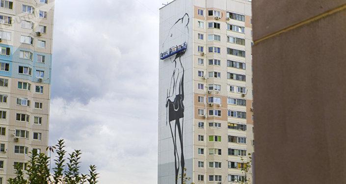 来自全世界20多个国家的60位艺术家在不到一个月的时间内,把高层住宅的正面外墙都画上了画