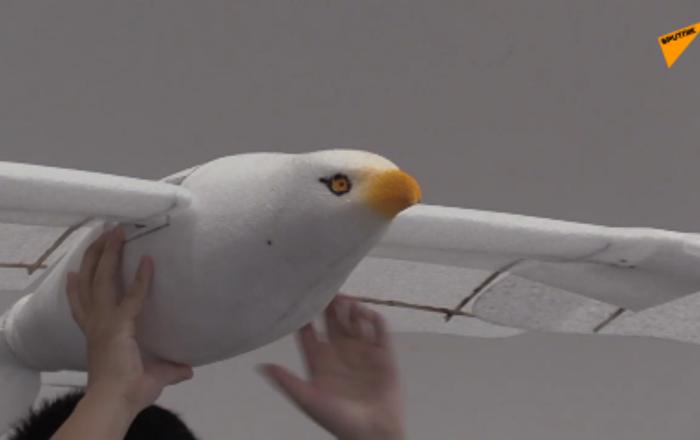 智能飛鳥亮相北京