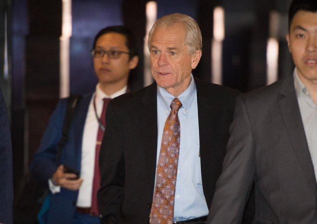 美国白宫贸易顾问彼得·纳瓦罗(Peter Navarro)