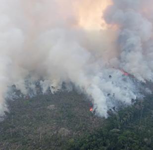 亞馬遜大火仍在蔓延
