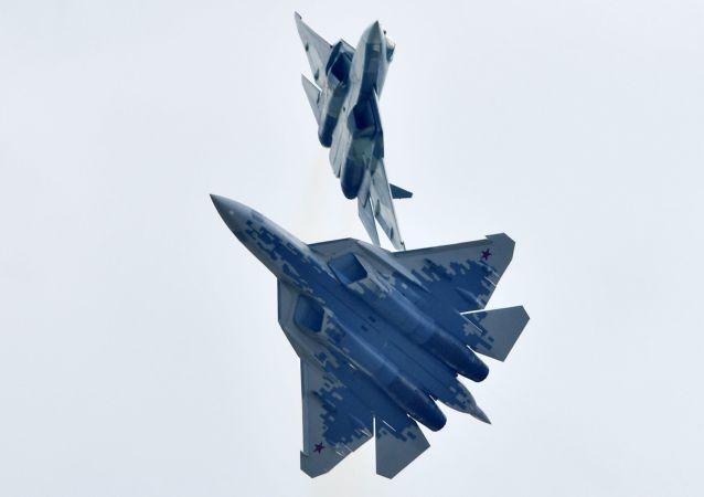 土总统:土耳其与俄罗斯正就供应苏-57战斗机问题进行谈判
