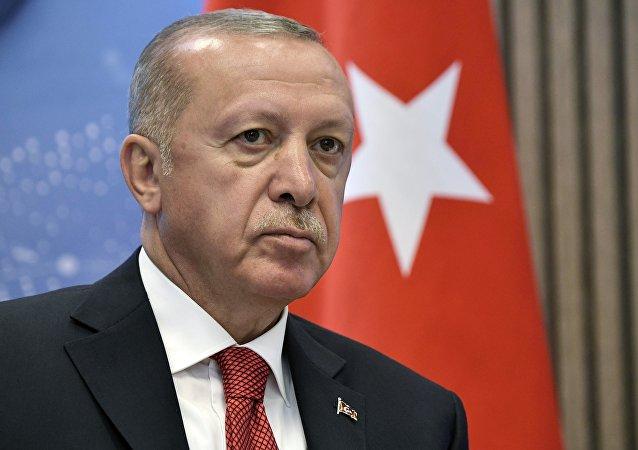 土耳其或于两周后在叙东北部展开行动