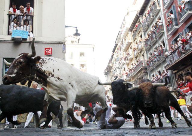 西班牙奔牛活动中有一人丧生