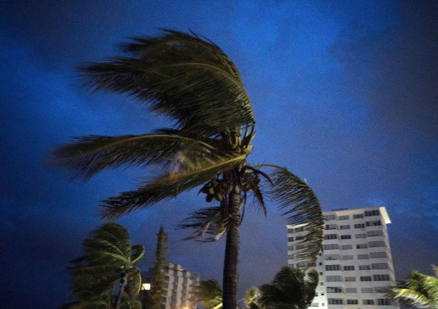 美國海岸「多里安」颶風減弱至一級水平