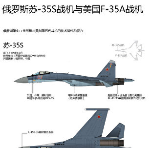 俄罗斯苏-35S战机与美国F-35A战机