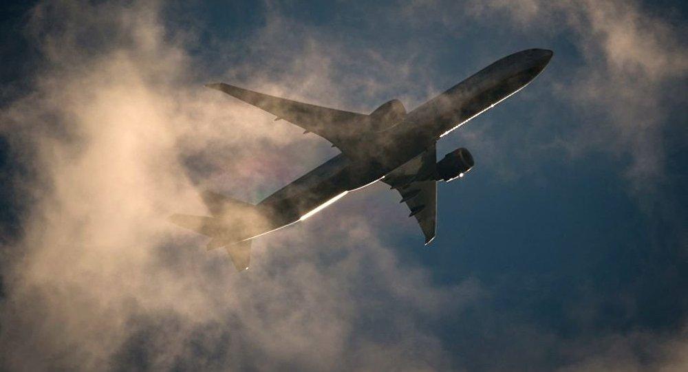 美國男子非法進入飛機貨艙被抓