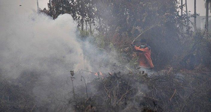 印尼当局将采用人工降雨灭火
