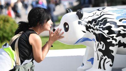 一名女孩在莫斯科全俄展覽中心舉行的「中國:偉大遺產和新時代」中國文化節大熊貓雕塑展上。