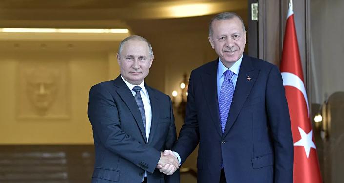 俄土总统讨论包括伊德利卜冲突降级区局势在内的叙利亚问题