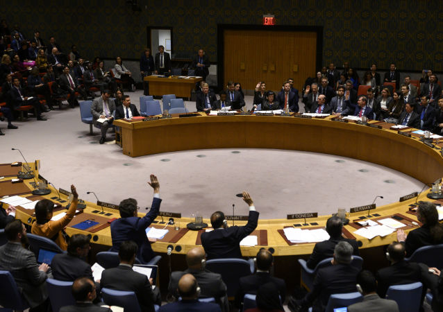 联合国安理会(资料图片)