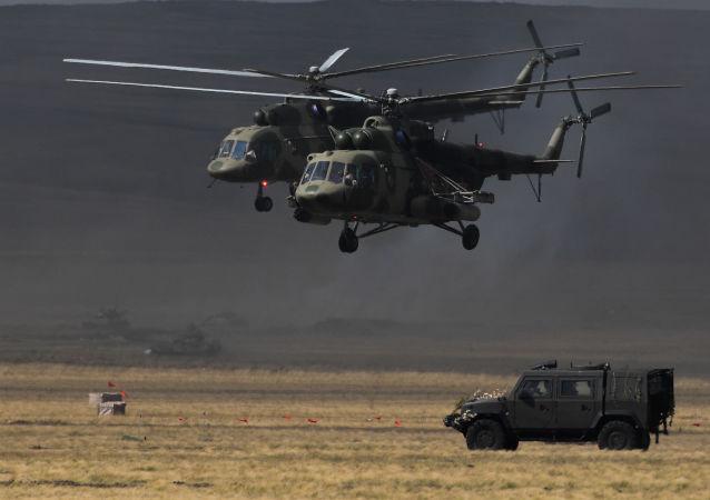 专家:上合组织将发展军事维度