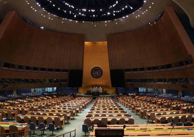 俄議員:美方拒絕向俄代表團發放簽證違背聯合國原則