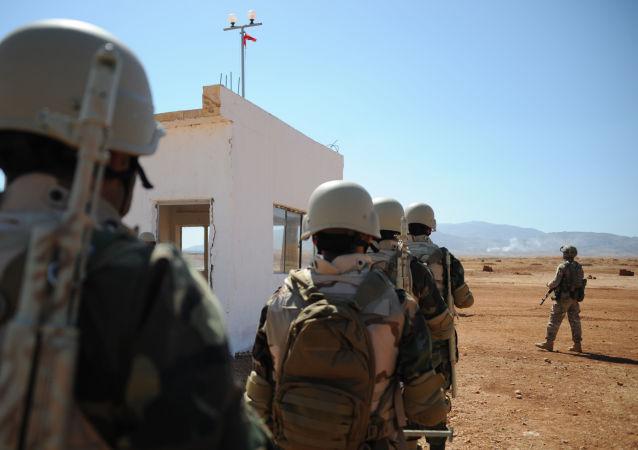 彭斯稱美國和土耳其達成敘利亞停火共識