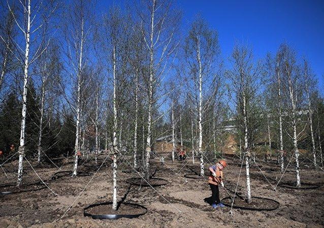 中國鐵建可能將參加莫斯科新區公園的項目