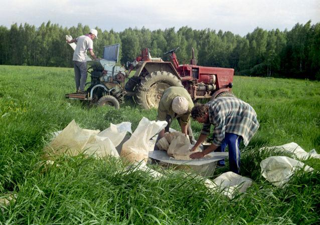Подготовка удобрений для вбрасывания в почву