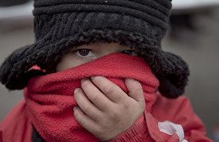 俄科學家:全球氣溫升高將導致城市空氣污染加重