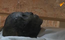 埃及卢克索地区发现古代工业区遗迹