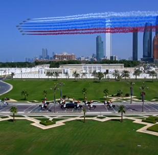 普京對阿聯酋進行國事訪問