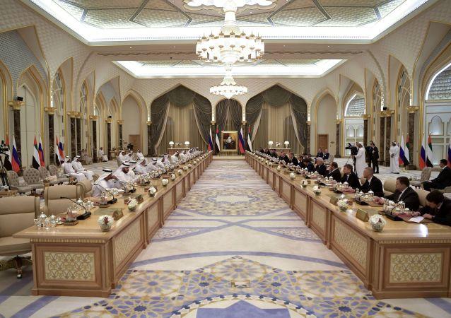 普京:俄罗斯与阿联酋签订价值约14亿美元的新合同