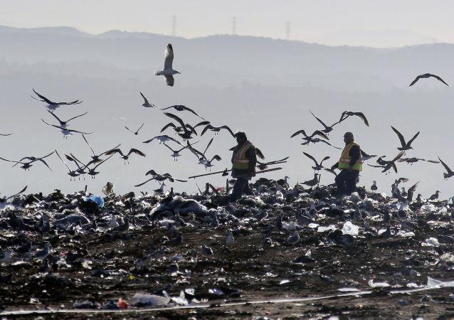 专家:俄罗斯不会遭遇垃圾纠纷