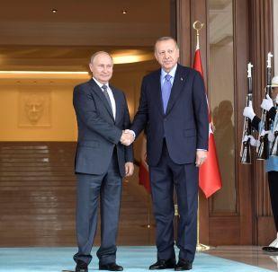普京与埃尔多安会晤