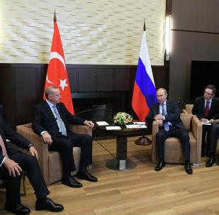 普京称,俄土就叙-土边界局势作出了前途攸关的决策