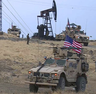 专家:美国未必将从叙利亚撤出所有力量