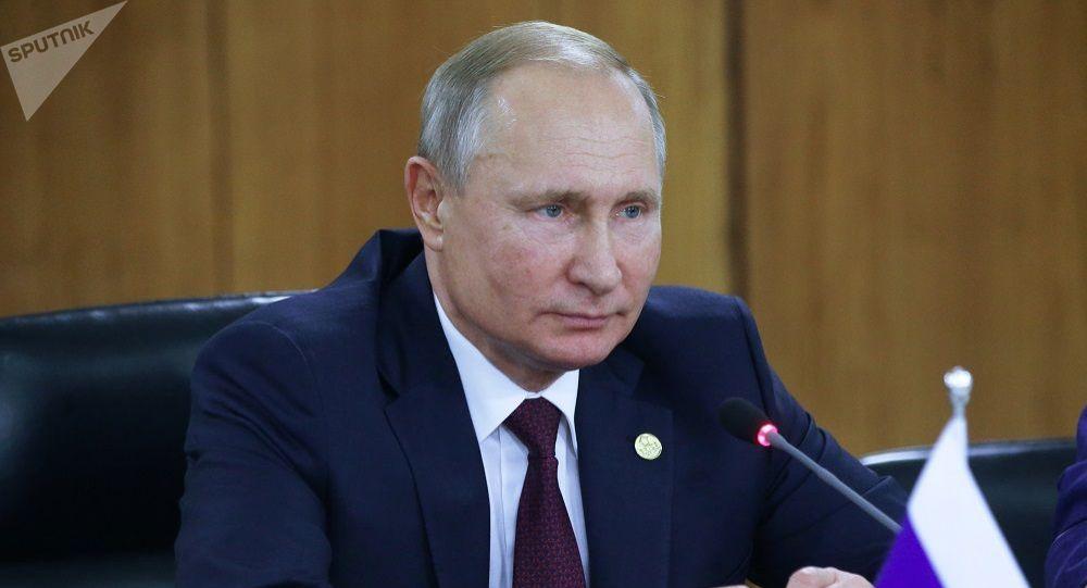 普京表示,儘管全球經濟指數呈下降趨勢,但俄羅斯經濟保持著積極態勢