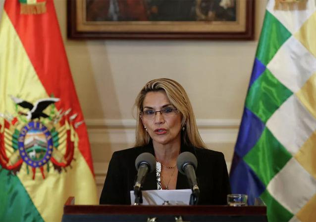 玻利維亞臨時總統阿涅斯