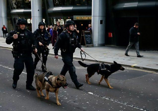 媒体:伦敦桥袭击事件犯罪分子曾被判参与恐怖活动