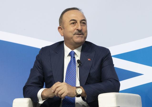 土耳其外长:土希望明年2月与俄就叙问题举行双边峰会