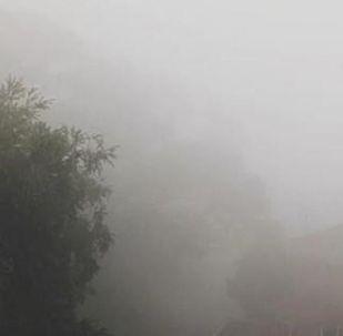 环境灾难的边缘:烟雾中的悉尼
