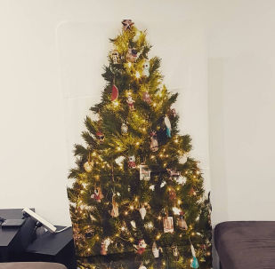 澳大利亚人想法从猫爪下拯救圣诞树