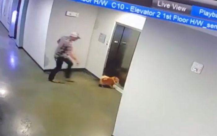 男子救下被电梯门卡住的狗狗